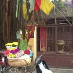 Frische Blumen werden in Vietnam zur Dekoration bei vielen Zwecken verwendet