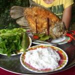 Im Mekong Delta kann man hervorragenden, fangfrischen Fisch essen