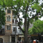 Die Infrastruktur in Hanoi kann noch ausgebaut werden