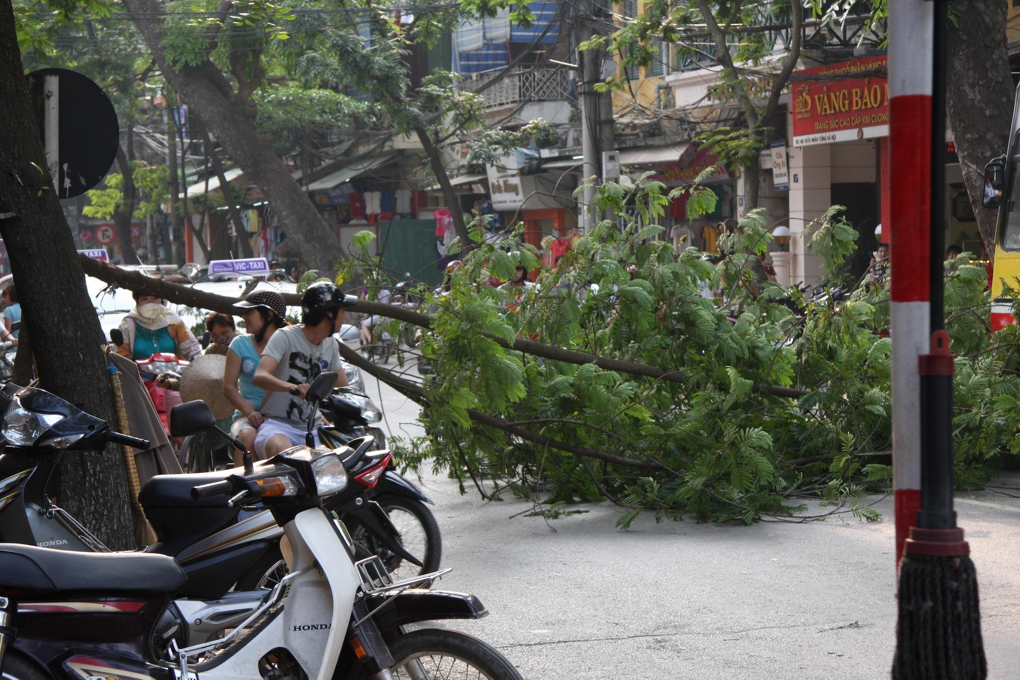 Auch Hindernisse können den Verkehr in Saigon nur kurz aufhalten