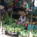 Bananen gehören sicherlich in Vietnam zu den populäreren Früchten