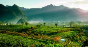Das Moc-Chau-Highland von Son-La gehört ebenfalls zu den Geheimtipps für das nordwestliche Hochland von Vietnam.