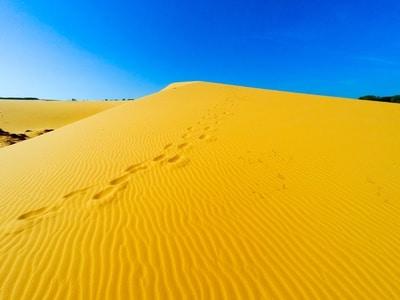 Sanddünen in Mui Ne sind sehr populär bei Touristen, vor allem weil niemand diese in Vietnam erwartet hätte.